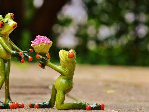 Онлайн-знакомства: как найти любовь