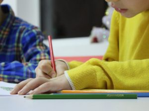 Обучение у репетитора: чему и за сколько учат