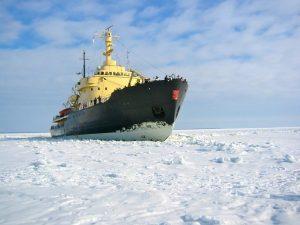 В круиз на ледоколе: 8 вариантов путешествий, которые нас удивили