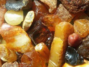 Сувениры из отпуска: везем янтарь из Калининграда