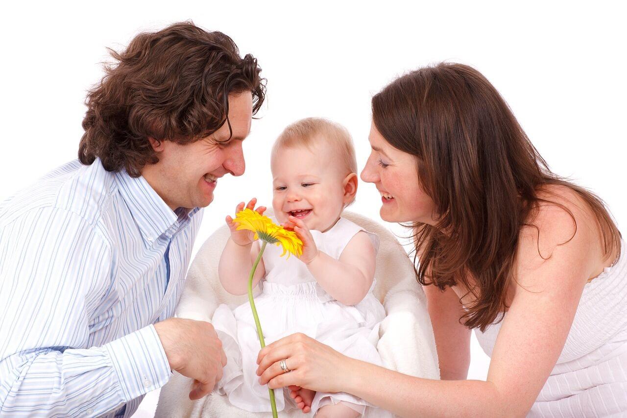 Семейный бюджет: все в дом, все в семью