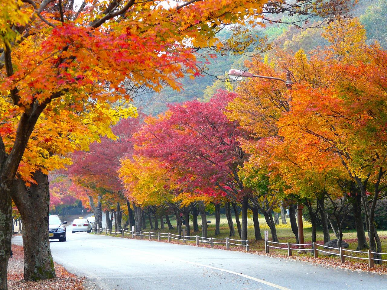 Выгодно ли идти в отпуск осенью