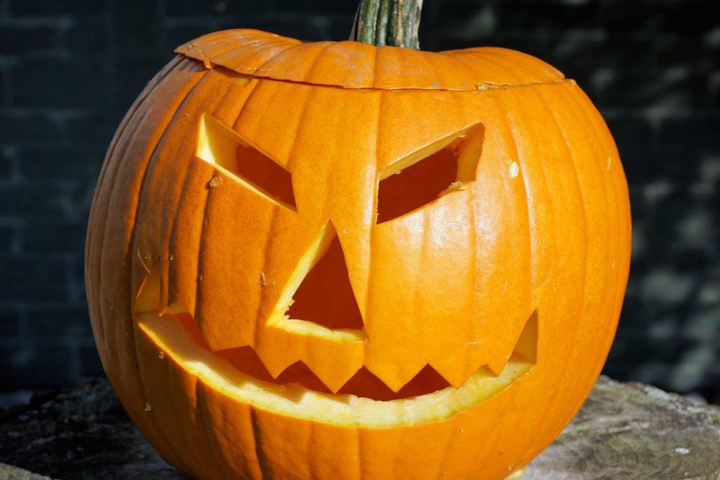 pumpkin-1747288_1280