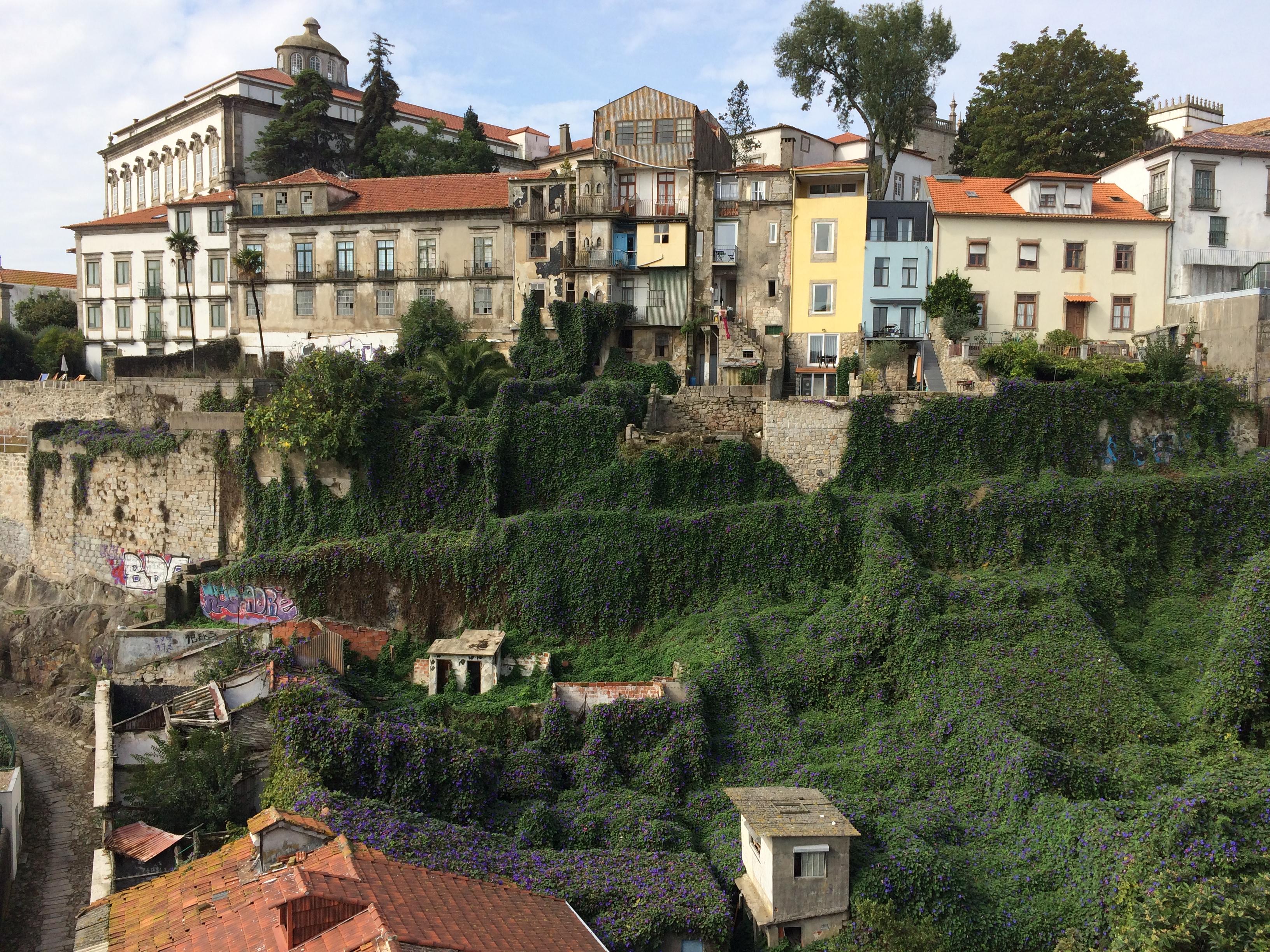 Нетипичный путеводитель: Порту — 15 мест, обязательных к посещению